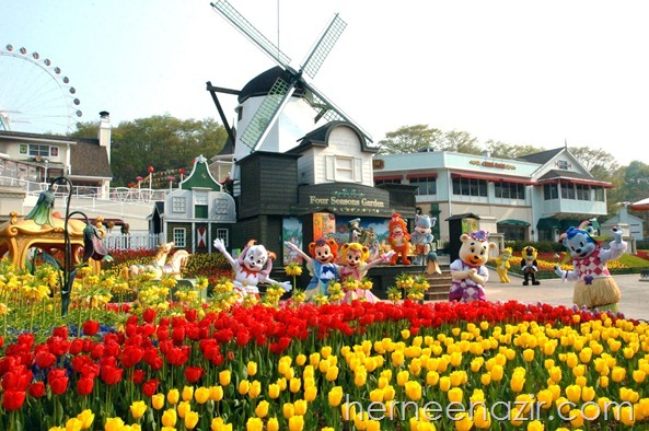 Everland Theme Park South Korea