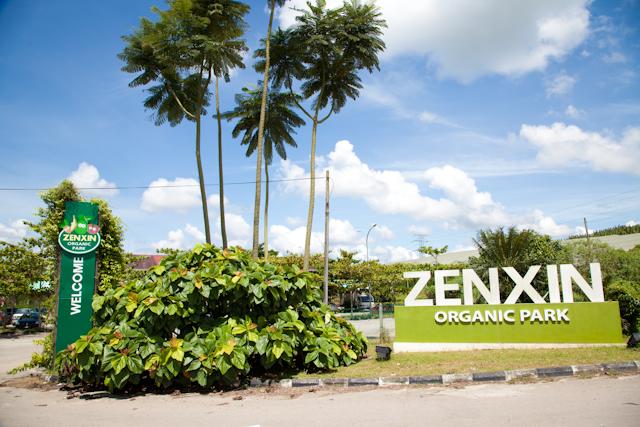 Nikmati Kehijauan Alam di Zenxin Organic Park Kluang