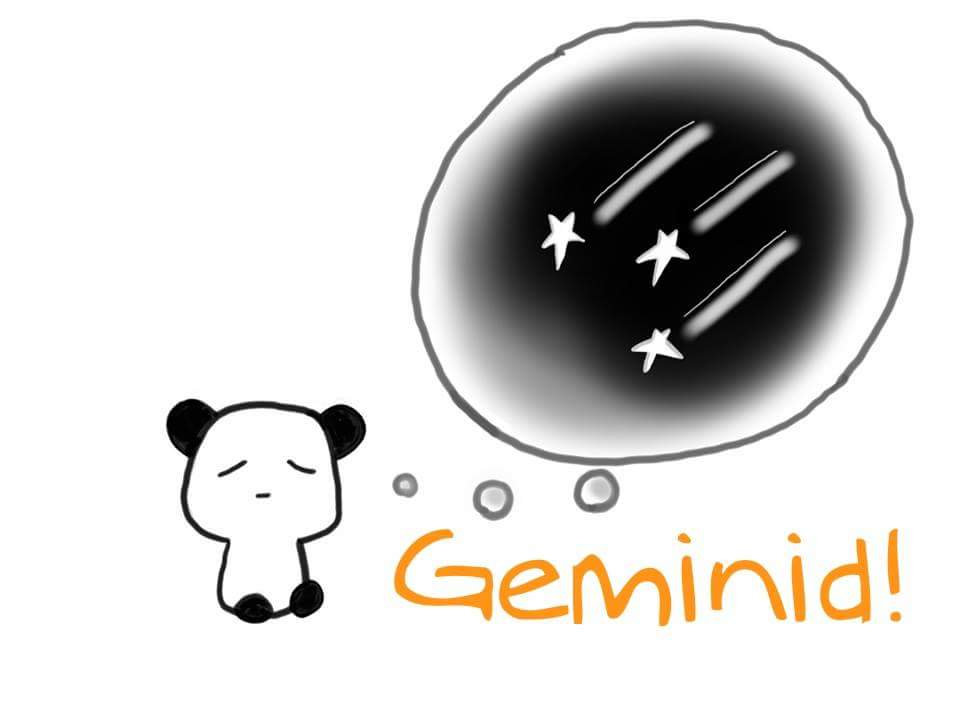 Observing The Biggest Meteor Shower of The Year 2017 – Geminid | 13 Dec 2017