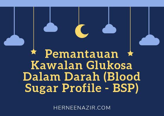 My Pregnancy Journey | Pemantauan Kawalan Glukosa Dalam Darah (Blood Sugar Profile – BSP)