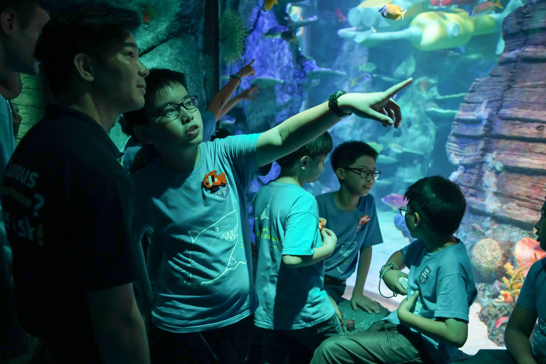 SEA LIFE Malaysia, an Up-Close Ocean Experience, Through Magical Storytelling, Interactive Displays And Hands-On Encounters