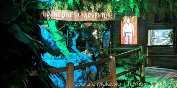 MALAYSIAN RAINFOREST sea life