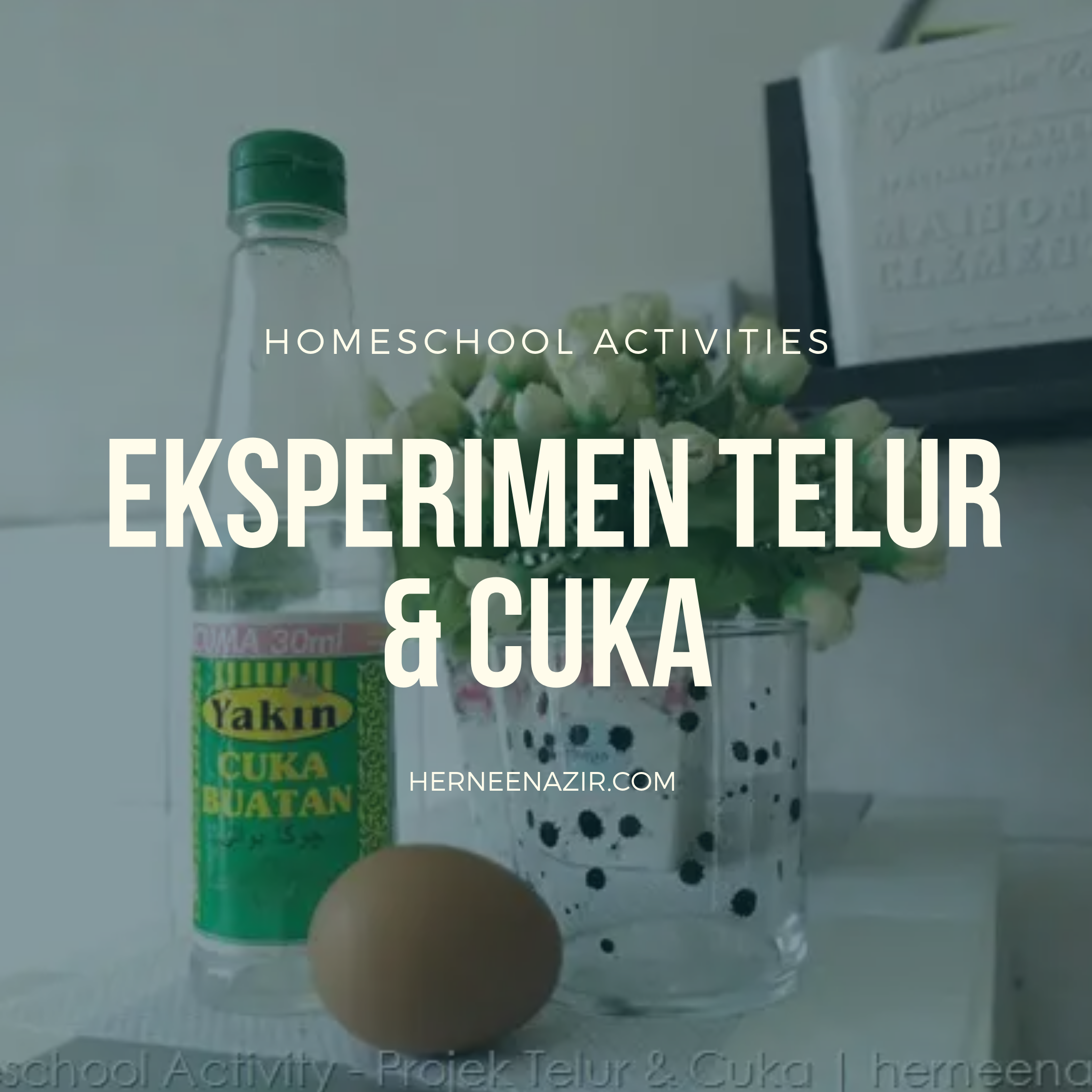 Homeschool Activities | Eksperimen Telur & Cuka