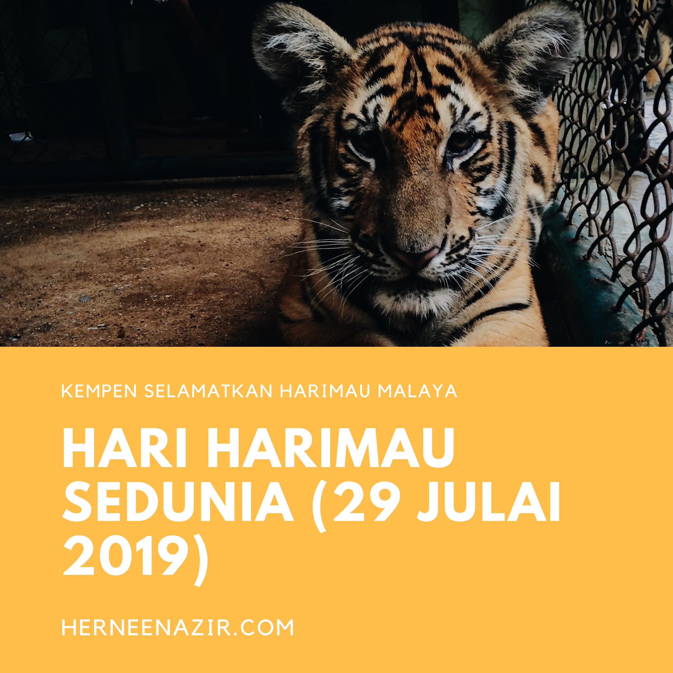 Hari Harimau Sedunia – International Tiger Day 2019 (29 July 2019)